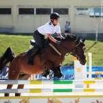 Но только лошади летать умеют чудно.... 23-08-2011 КСК Битца