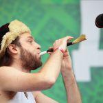 Дикая Мята - 2012. 01-03 июня 2012 Этномир, Калужская обл.
